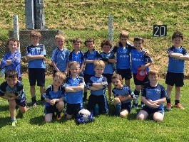 U8 Blitz in Barryroe