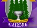 Carbery take  the Premier 2 Minor Hurling Final